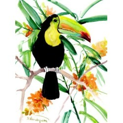 Giclee Print: Toucan Suren by Suren Nersisyan: 32x24in found on Bargain Bro India from Art.com for $70.00