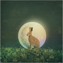 Premium Giclee Print: Moon 3 by Claire Westwood: 12x16in