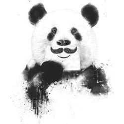 Art Print: Funny Panda by Balazs Solti: 18x12in