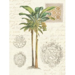 Art Print: Vintage Palm Study I by Wild Apple Portfolio: 32x24in