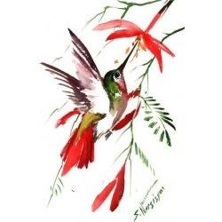 Art Print: Hummingbird 8 by Suren Nersisyan: 16x12in found on Bargain Bro from Art.com for USD $15.20
