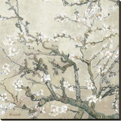 Stretched Canvas Print: Almond Branches in Bloom, San Remy, c.1890 (tan) by Vincent van Gogh: 34x34in found on Bargain Bro from Art.com for USD $178.60