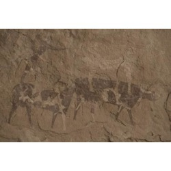 Photographic Print: Cattle and Human Figures, Cave Painting, Oued in Djeran, Near Djanet, Tassili N'Ajjer: 24x16in