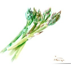 Giclee Print: Asparagus by Suren Nersisyan: 12x16in found on Bargain Bro Philippines from Art.com for $30.00