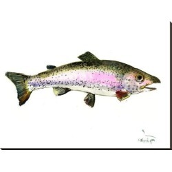 Stretched Canvas Print: Rainbow Trout 2 by Suren Nersisyan: 36x48in found on Bargain Bro from Art.com for USD $121.60