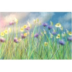 Premium Giclee Print: Cornflower Meadow by Claire Westwood: 18x24in
