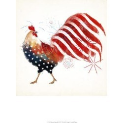 Art Print: Rooster Fireworks I by Victoria Borges: 19x13in found on Bargain Bro Philippines from Art.com for $15.00