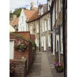 Photographic Print: Terraced Houses in Chapel Street, Robin Hood's Bay, England by Pearl Bucknall: 24x18in