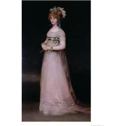 Giclee Print: Portrait of Maria Theresa De Bourbon Y Vallabriga, the Condesa De Chinchon, 1801 by Francisco de Goya: 24x18in found on Bargain Bro India from Art.com for $25.00