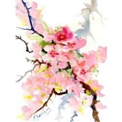 Art Print: Cherry Blossom3 by Suren Nersisyan: 16x12in found on Bargain Bro from Art.com for USD $15.20