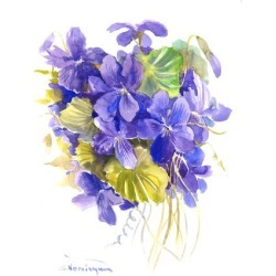 Giclee Print: Violets by Suren Nersisyan: 48x36in found on Bargain Bro India from Art.com for $135.00