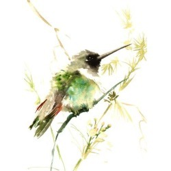 Art Print: Hummingbird2 by Suren Nersisyan: 24x18in found on Bargain Bro from Art.com for USD $19.00