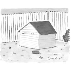 """Premium Giclee Print: A dog house with no doors is seen with the sign """"Houdini."""" - New Yorker Cartoon by Danny Shanahan: 12x9in"""