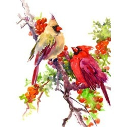 Giclee Print: Cardinal Birds Suren by Suren Nersisyan: 16x12in found on Bargain Bro Philippines from Art.com for $30.00