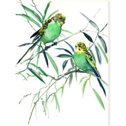 Stretched Canvas Print: Parakeets Budgies by Suren Nersisyan: 24x18in found on Bargain Bro from Art.com for USD $76.00