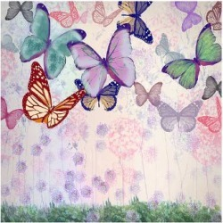 Premium Giclee Print: Pastels White Fly by Claire Westwood: 9x12in