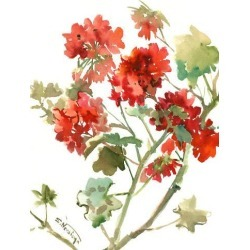 Art Print: Geranium 2 by Suren Nersisyan: 24x18in found on Bargain Bro from Art.com for USD $19.00