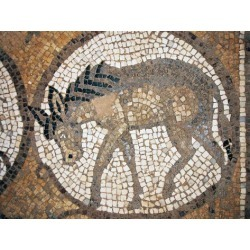 Photographic Print: Floor Mosaic of Donkey in Byzantine Church in Petra: 24x18in