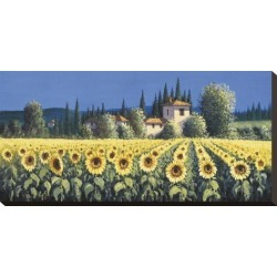 Stretched Canvas Print: Summer Blooms Canvas Print by David Short: 12x24in found on Bargain Bro India from Art.com for $65.00