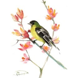 Art Print: Goldfinch 3 by Suren Nersisyan: 24x18in found on Bargain Bro from Art.com for USD $19.00