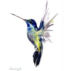 Stretched Canvas Print: Hummingbird 3 by Suren Nersisyan: 48x36in found on Bargain Bro India from Art.com for $160.00