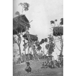 Photographic Print: Dobos, tree houses for unmarried women in Melanesia, 1902 by W Lindt: 12x8in
