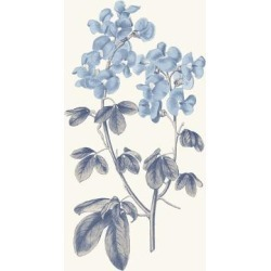 Art Print: Blue Botanical III by Wild Apple Portfolio: 24x18in