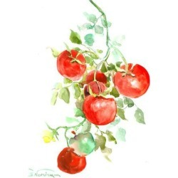 Giclee Print: Tomatoes On Vine by Suren Nersisyan: 48x36in found on Bargain Bro from Art.com for USD $104.88