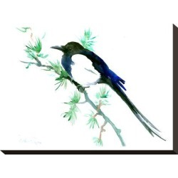 Stretched Canvas Print: Magpie by Suren Nersisyan: 12x16in found on Bargain Bro from Art.com for USD $57.00