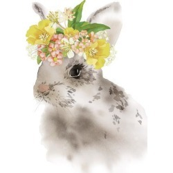 Stretched Canvas Print: Flower Crown - Rabbit by Kristine Hegre: 32x24in found on Bargain Bro India from Art.com for $210.00