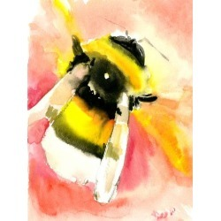 Giclee Print: Bumblebee by Suren Nersisyan: 48x36in found on Bargain Bro India from Art.com for $135.00