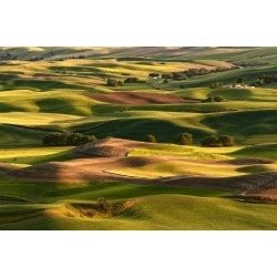 Photographic Print: Expansive view of Palouse farming region of Eastern Washington State from high atop Steptoe Butte by Adam Jones: 36x24in