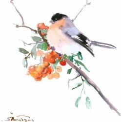 Giclee Print: Bullfinch by Suren Nersisyan: 12x12in found on Bargain Bro Philippines from Art.com for $30.00