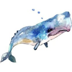 Art Print: The Sperm Whale by Suren Nersisyan: 12x12in found on Bargain Bro from Art.com for USD $15.20