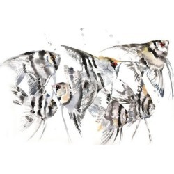 Giclee Print: Angelfish by Suren Nersisyan: 36x48in found on Bargain Bro Philippines from Art.com for $135.00