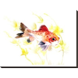 Stretched Canvas Print: Fish Aquarium Nursery by Suren Nersisyan: 18x24in found on Bargain Bro India from Art.com for $100.00