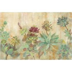 Art Print: Succulent Garden by Silvia Vassileva: 24x16in