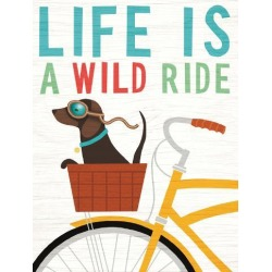 Art Print: Beach Bums Dachshund Bicycle I Life by Wild Apple Portfolio: 32x24in