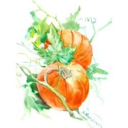 Art Print: Pumpkin by Suren Nersisyan: 16x12in found on Bargain Bro from Art.com for USD $15.20