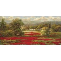 Art Print: Poppy Village by Hulsey: 20x38in