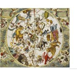 Giclee Print: Atlas Coelestis Seu Harmonia Macrocosmica, 18th Century by Andreas Cellarius: 24x18in found on Bargain Bro India from Art.com for $30.00