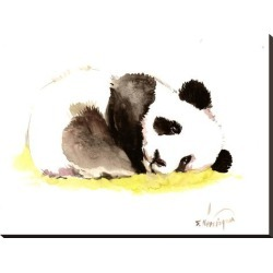 Stretched Canvas Print: Sleeping Baby Panda by Suren Nersisyan: 28x37in found on Bargain Bro from Art.com for USD $106.40