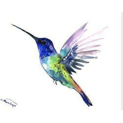 Stretched Canvas Print: Hummingbird 8 by Suren Nersisyan: 24x32in found on Bargain Bro India from Art.com for $135.00