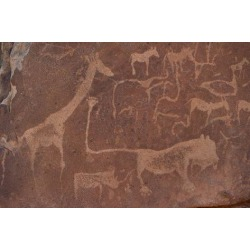 Photographic Print: Cave Paintings by Bushmen, Damaraland, Namibia: 24x16in