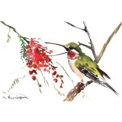 Art Print: Ruby Throated Hummingbird by Suren Nersisyan: 12x16in found on Bargain Bro from Art.com for USD $15.20