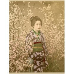 Photographic Print: Japanese Girl Next to Cherry Blossom Tree: 24x18in