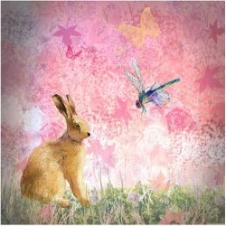 Premium Giclee Print: Pastels Pink by Claire Westwood: 12x16in