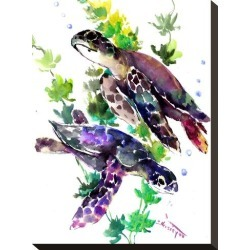 Stretched Canvas Print: Turtle by Suren Nersisyan: 16x12in found on Bargain Bro from Art.com for USD $57.00