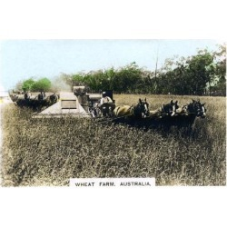 Giclee Print: Grenfell Wheat Farm, Australia, C1920S: 24x16in