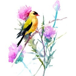 Giclee Print: Goldfinch And Milk Thistle Flowers by Suren Nersisyan: 16x12in found on Bargain Bro Philippines from Art.com for $30.00